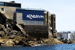 35-aquarium-san-sebastian