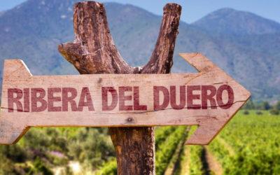 8 д./7 н. Индивидуальный тур по виноградникам Рибера дель Дуэро и Руэда