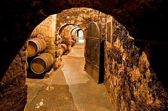 marques-de-riscal-winery
