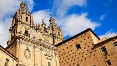 spain-salamanca-cathedral-shells